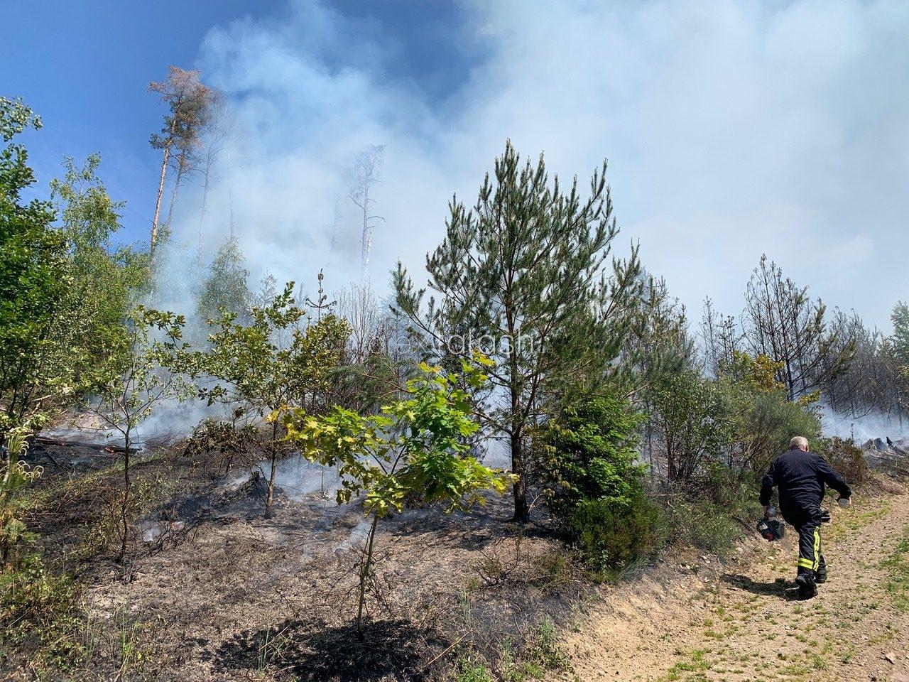 Großeinsatz bei einem Waldbrand in Hagen – 160 Einsatzkräfte im Einsatz